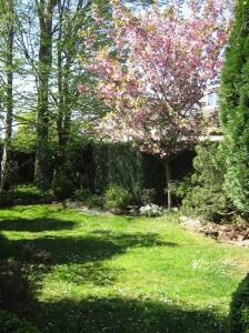 De tuin van Anneke Cornelissens in het voorjaar