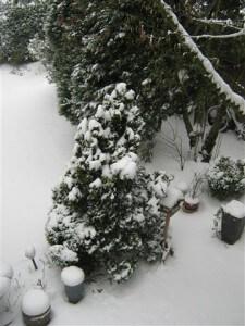 Het was nog even diep winter in maart.