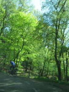 Wandelaars en fietsers kunnen hun hart in Zuid Limburg ophalen, daar waar Anneke Cornelissens woont.