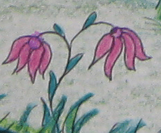 De vogeltjes zochten de mooiste bloemetjes voor Heksemientje uit.