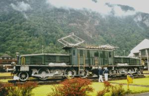 De krokodil is de naam van een oude locomotief die gestationeerd is in Altdorf, ten zuiden van de Vierwaldstättersee.