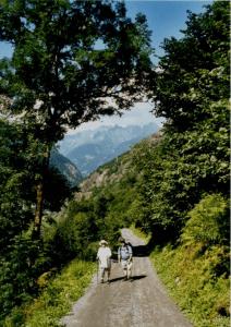 Het Maderanerthal is een dal, waar je al op de paden diverse bergkristallen kunt vinden. Het dal staat erom bekend. Het is een zijdal van de Vierwaldstättersee en ligt parallel aan het Schächental, maar iets verder naar het zuiden.