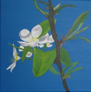 Een van de schilderijen: kersenbloesem in Stein.