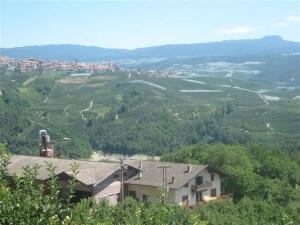 Het hele dal van Val di Non in Noord-Italië staat vol met appelboomgaarden.