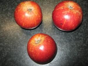 Herfstappeltje kreeg haar naam, omdat haar mutsje er uit zag als een herfstappeltje. Even rood en even vrolijk.