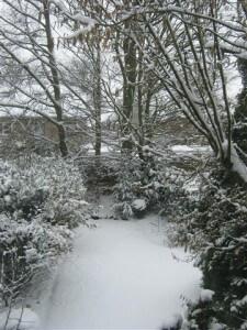 Sneeuw in Zuid Limburg