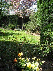 Tuin waar Anneke Cornelissens bij mooi weer schrijft.